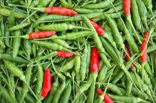 Free Fresh Chili Stock Photo - 17307960