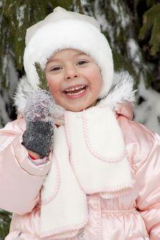 Free Winter Pleasure Royalty Free Stock Photo - 17309495