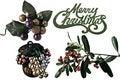 Free Merry Christmas Greenery Royalty Free Stock Photos - 17311298