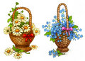 Free Illustrations Of Flowers Royalty Free Stock Photos - 17314998