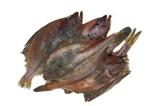 Four Fresh Flounder Fishes Royalty Free Stock Images