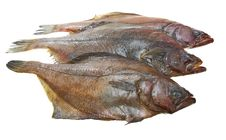 Four Fresh Flounder Fishes Stock Photography