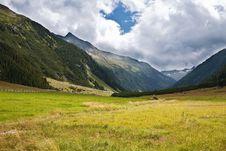 Free Alps Mountains Meadows Royalty Free Stock Photos - 17313638