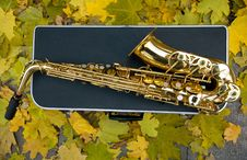 Free Saxophone With Case. Fall Royalty Free Stock Photo - 17313935