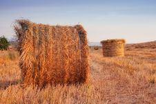 Free Golden Hay Bales In The Countryside Royalty Free Stock Image - 17316166