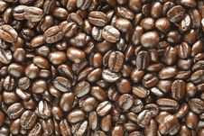 Free Many Coffee Beans Background Royalty Free Stock Photos - 17317488