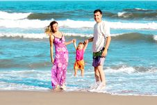 Free Family Of The Sea Royalty Free Stock Photo - 17317705