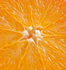 Free Orange Stock Photos - 17318293