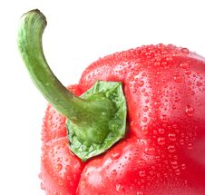 Free Capsicum. Sweet Pepper Stock Photography - 17319092