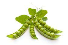 Free Green Peas Stock Photography - 17319372