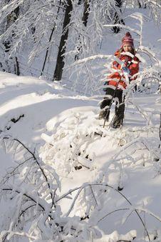 Free Kid Enjoying Winter Stock Photos - 17319993