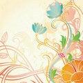 Free Hibiscus Royalty Free Stock Photos - 17322168