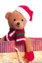 Free Teddy Bear Royalty Free Stock Photography - 17325327