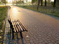 Free Wooden Bench In Park Royalty Free Stock Photo - 17325385