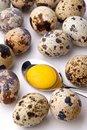 Free Egg Yolk In Spoon Royalty Free Stock Photo - 17325825