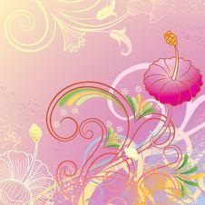 Free Hibiscus Royalty Free Stock Photo - 17320115