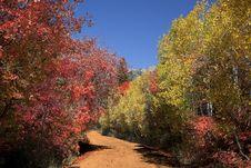 Free Rocky Mountain Fall Royalty Free Stock Photos - 17321318