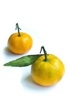 Free Two Yellow Orange Royalty Free Stock Image - 17321766