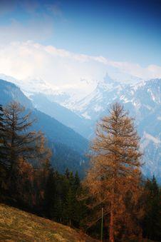 Spring Alps Stock Image
