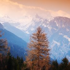 Free Spring Alps Stock Photos - 17322393