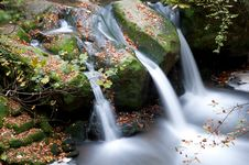 Free Autumn Forest Waterfall Stock Image - 17324031