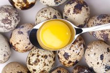 Free Egg Yolk In Spoon Stock Image - 17325831