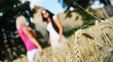 Free Two Girls In Wheat Field Royalty Free Stock Photography - 17325927