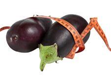 Free Eggplant Stock Photography - 17325952