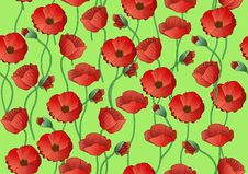 Papaver Seamless Background (vector) Royalty Free Stock Photo
