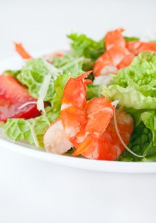 Free Shrimp Salad Royalty Free Stock Images - 17327469