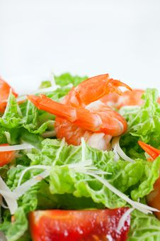 Free Shrimp Salad Royalty Free Stock Photo - 17327505
