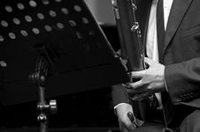 Free Bassoonist On Concert Stock Photos - 17328793