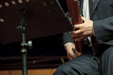 Free Bassoonist On Concert Stock Images - 17328794