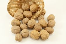 Free Nuts Stock Photos - 17329333