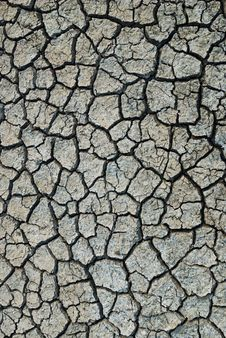Free Dry Soil Royalty Free Stock Photo - 17330205