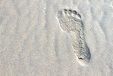 Free Footprints In The Sand Royalty Free Stock Images - 17330369
