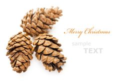 Free Three Christmas Cones Royalty Free Stock Image - 17332176