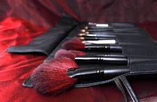 Free Brushes Royalty Free Stock Photos - 17334918