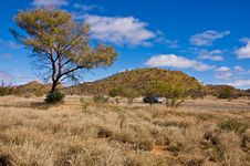 Free Australian Landscape Royalty Free Stock Photos - 17335708