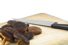 Free Mushrooms And Knife Stock Photo - 17335810