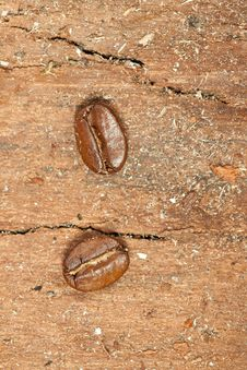 Free Tow Close-up Coffee Beans Stock Image - 17338371
