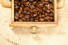 Free Coffee Beans In The Coffee Grinder Stock Photos - 17338373
