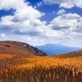 Free Mountain Meadow. Stock Image - 17345411