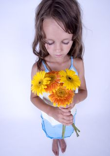 Free Little Girl With Flowers Royalty Free Stock Photography - 17340067