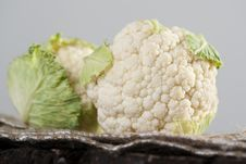 Free Fresh Clean Organic Cauliflower Royalty Free Stock Image - 17341156