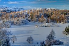 Free Tarn Hows In Winter 1 Stock Photos - 17341953