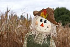 Free Cute Autumn Scarecrow Stock Images - 17345694
