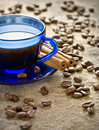 Free Cinnamon And Coffee Beans With Cup On Saucer Stock Images - 17358874