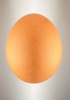 Free Abstract Egg. Collage . Royalty Free Stock Image - 17350956
