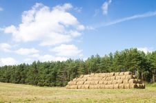 Free Wheat Haystacks Royalty Free Stock Photo - 17351695